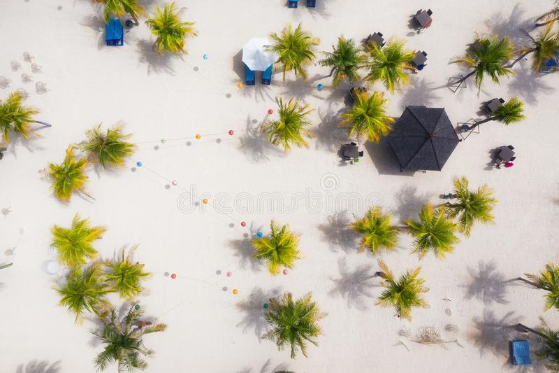 Palm trees as a background from top view. Beach and sand background from top view. Summer seascape from air. Bali island, Indonesi royalty free stock images