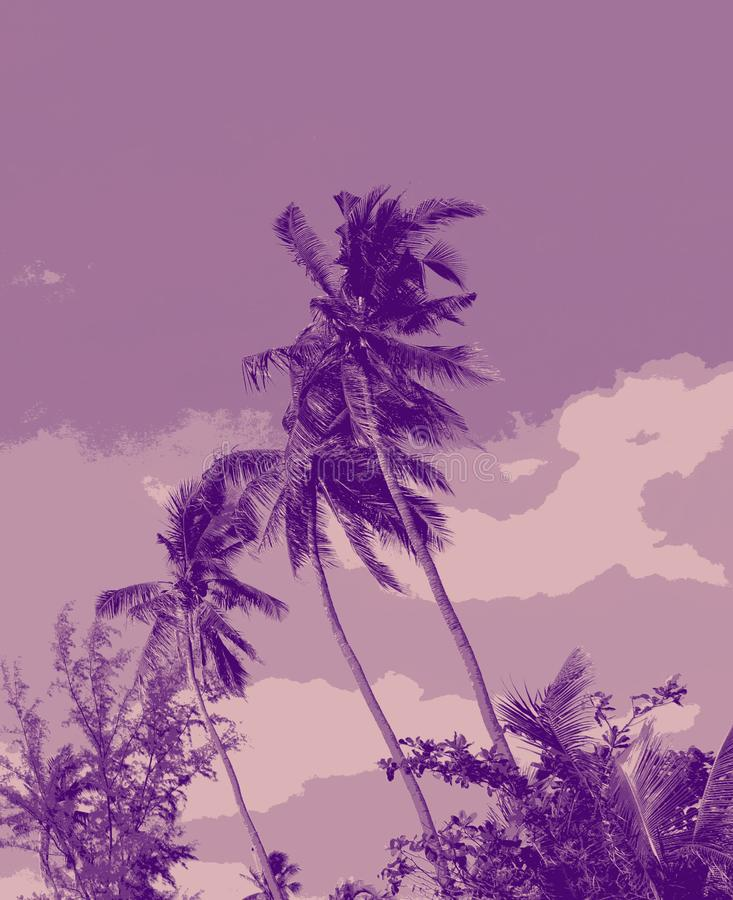 Beautiful palm trees blown by the wind. Palm trees on the background neb original poster style stock image