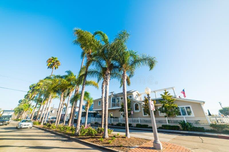Palm trees in Balboa island under a shining sun. Newport Beach, Orange County. Southern California, USA stock photos