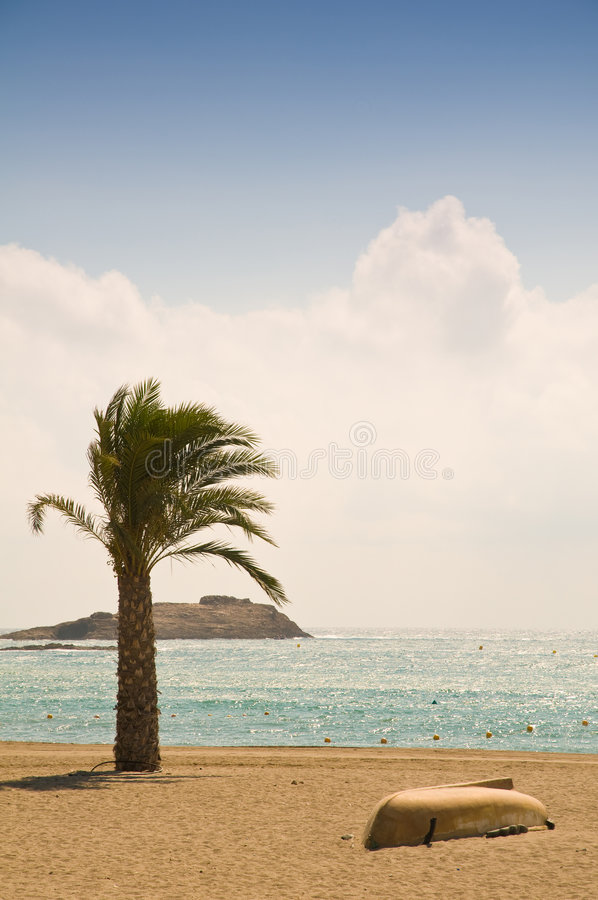 Palm Trees And Boats Royalty Free Stock Photo