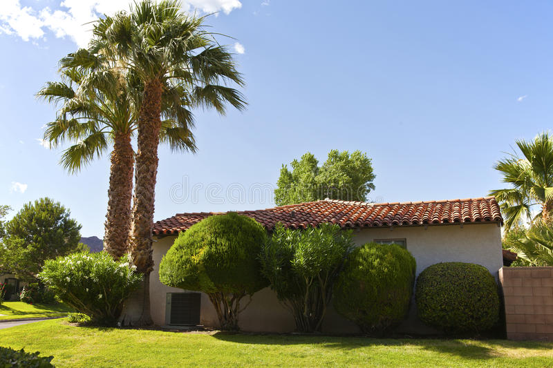 Palm Trees In A Boulder City Neighborhood Nevada. Stock Images