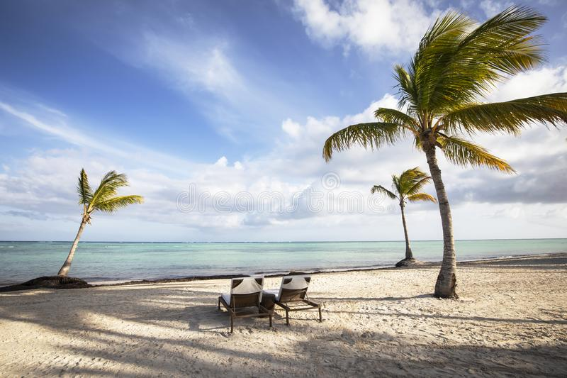 Palm trees and chaise lounge chairs on beach in the Caribbean against blue sky with white clouds. stock photography