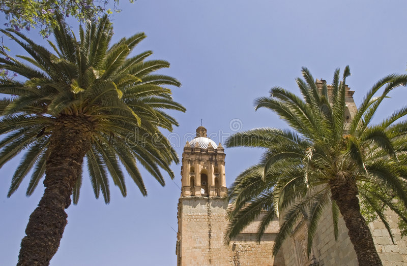 Palm trees with church tower. Santo Domingo church tower with palm trees in foreground. Oaxaca, Mexico royalty free stock photo