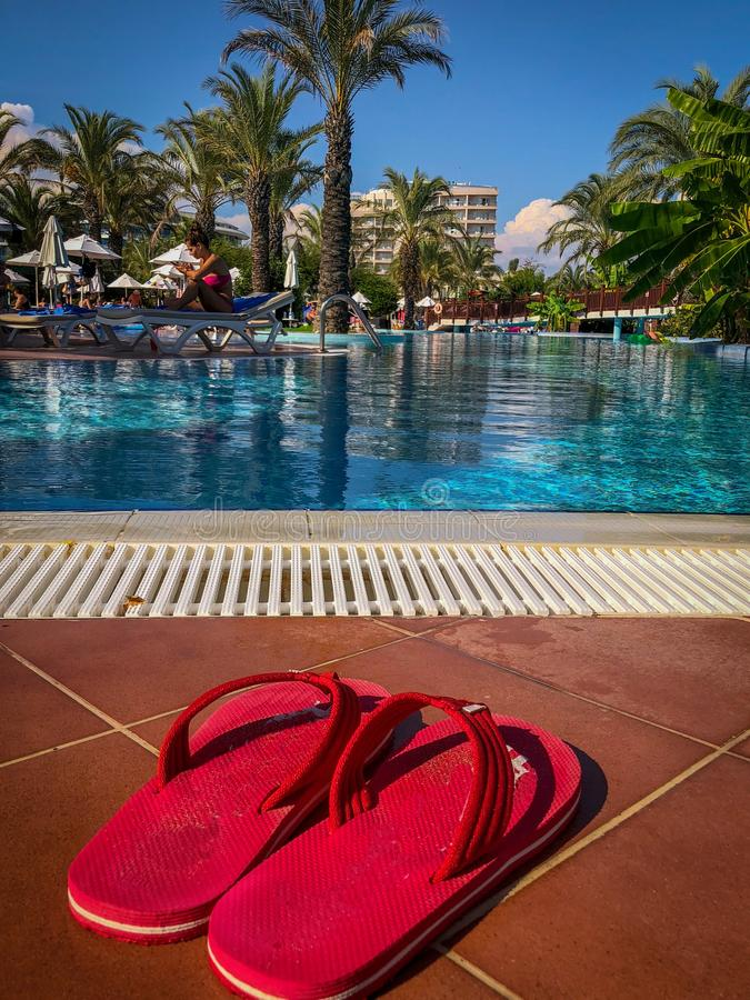 Palm trees in a dreamlike environment. An red Shoes in the front royalty free stock photo