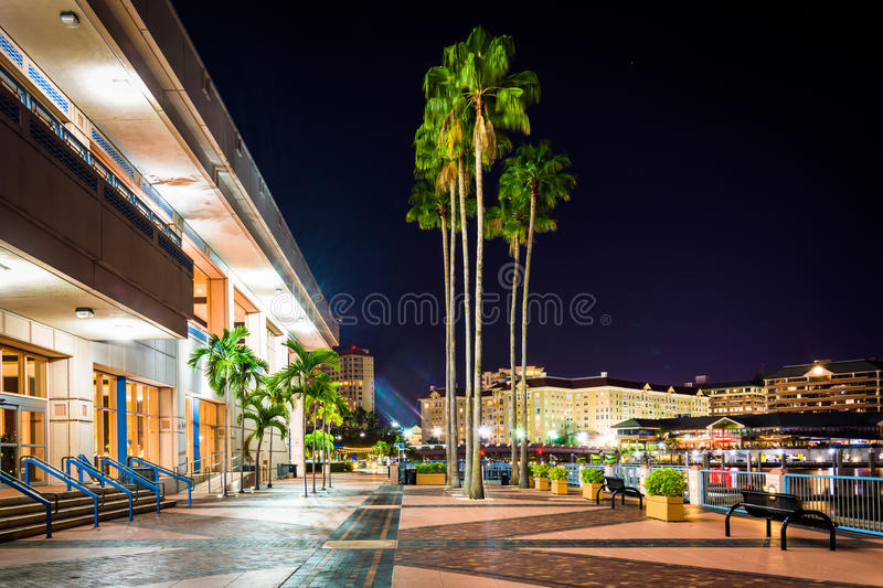 Palm trees and the exterior of the Convention Center at night in stock photo