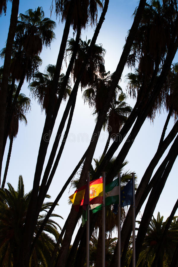 Palm trees and flags. Spanish flag between palm trees royalty free stock images