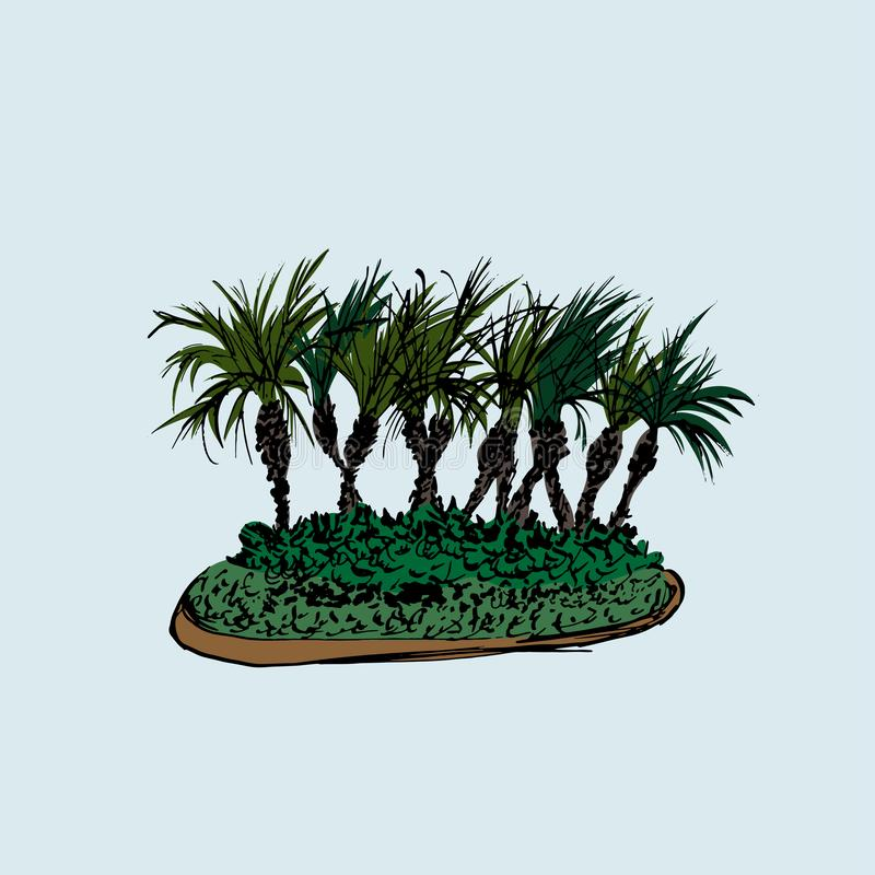 Palm trees group isolated on light background. Vector illustration. Hand drawn sketch.  vector illustration