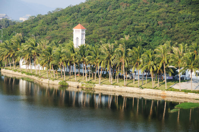 Download Palm Trees With Lake Stock Photos - Image: 23966343