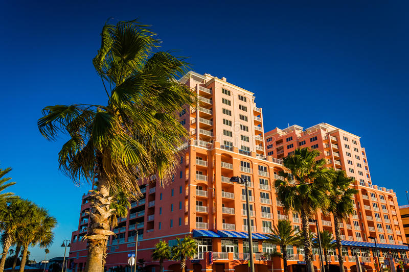 Palm trees and large hotel in Clearwater Beach, Florida. Palm trees and large hotel in Clearwater Beach, Florida stock image