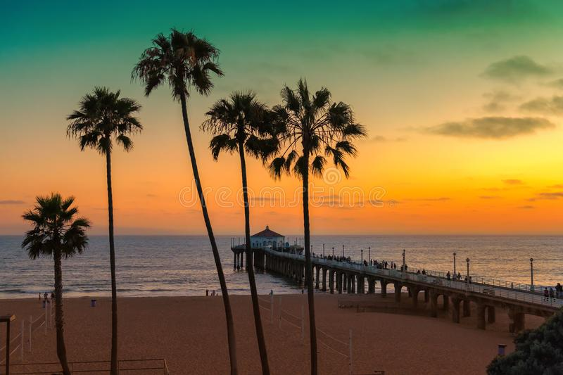 California beach at sunset, Los Angeles,. Palm trees on Manhattan Beach at sunset in California, Los Angeles, USA. Vintage processed. Fashion travel and tropical stock images