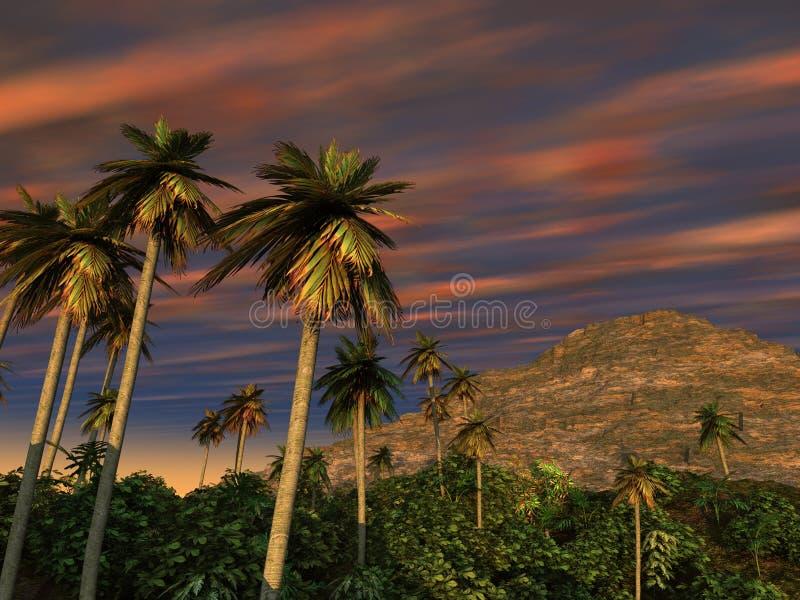 Download Palm Trees Mountain Sunset stock illustration. Image of vegetation - 14537919