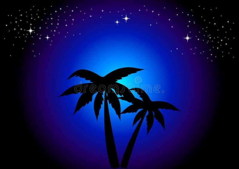 Palm Trees At Night royalty free illustration