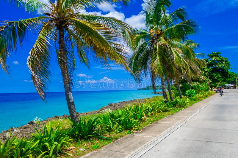 Palm trees in one side of a road in San Andres, Colombia in a beautiful beach background stock photography