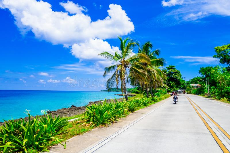 Palm trees in one side of a road in San Andres, Colombia in a beautiful beach background.  stock image