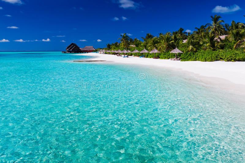 Download Palm Trees Over Lagoon And White Sandy Beach Royalty Free Stock Photos - Image: 23603278