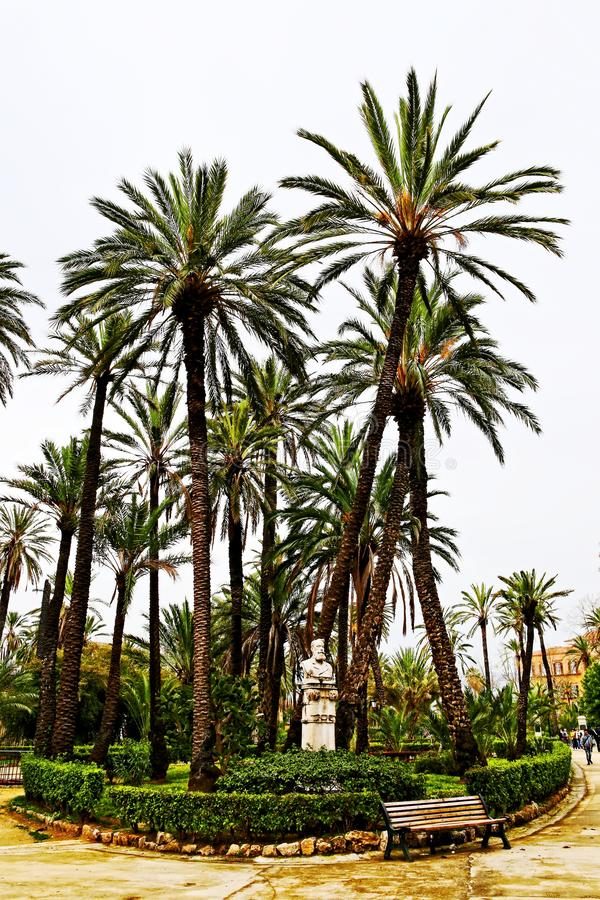 Palm trees in Park Villa Bonnano, Palermo stock photography