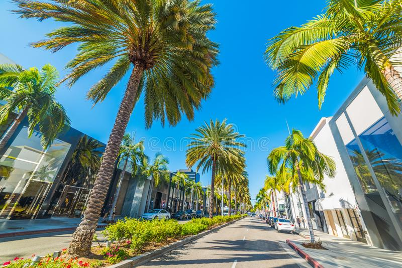 Palm trees in Rodeo Drive. Beverly Hills. Los Angeles, California royalty free stock photo