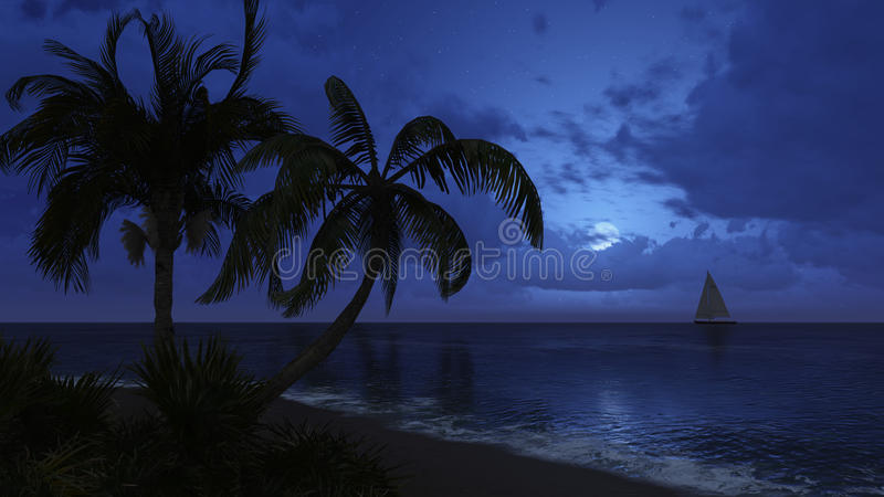 Palm Trees And Sailboat Silhouettes On The Night Sky ...
