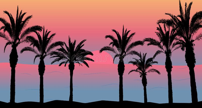 Palm trees and sea and sunset, beach silhouette. Beautiful scenery.  royalty free illustration