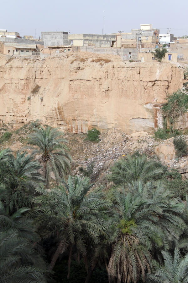 Palm trees in Shushtar, Iran. Palm trees and rock in Shushtar, Iran stock photography