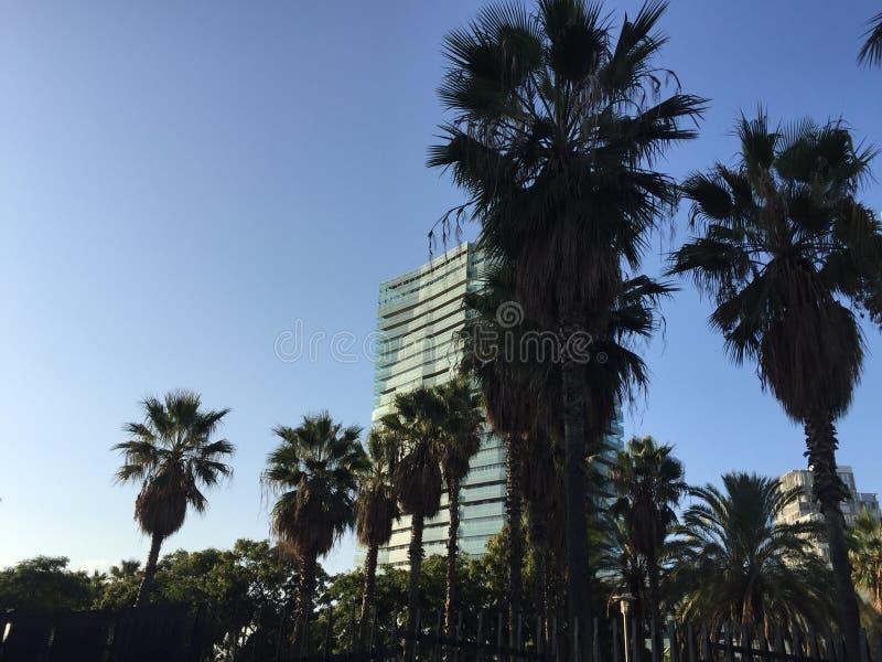 barcelona buildings royalty free stock photo