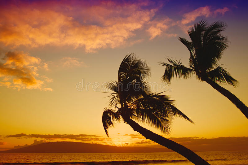 Download Tropical Sunset Royalty Free Stock Images - Image: 30137399