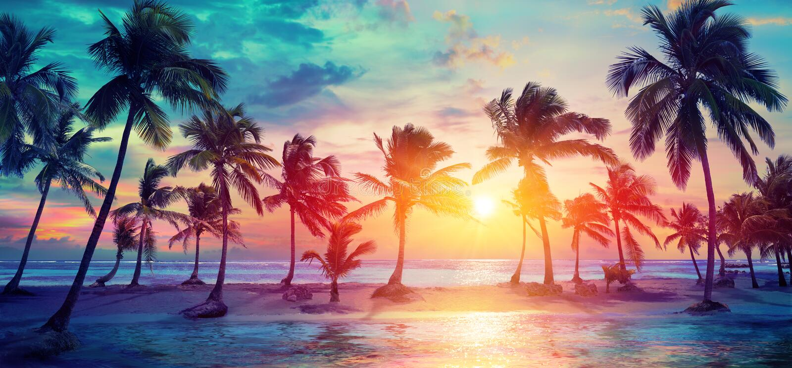 Palm Trees Silhouettes On Tropical Beach At Sunset stock photography