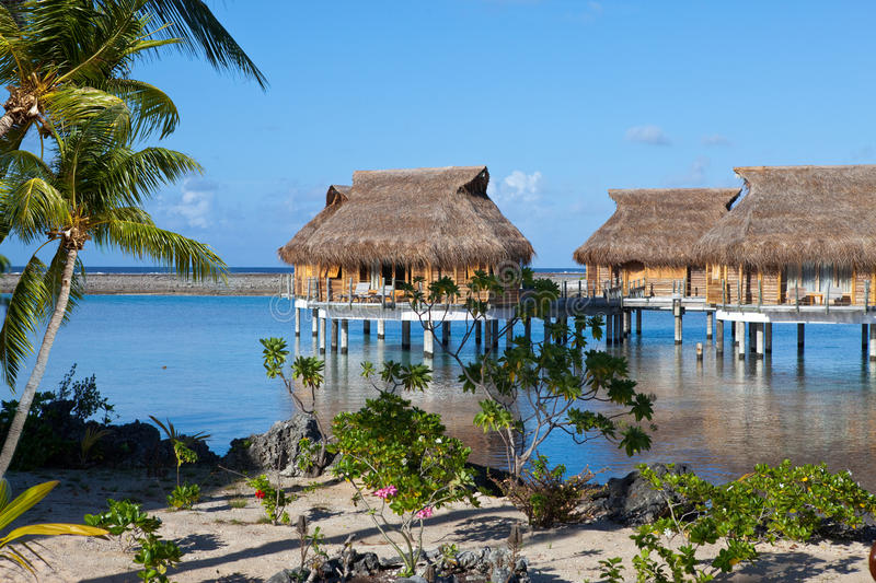 Download Palm Trees And Small Houses Stock Image - Image: 27558251