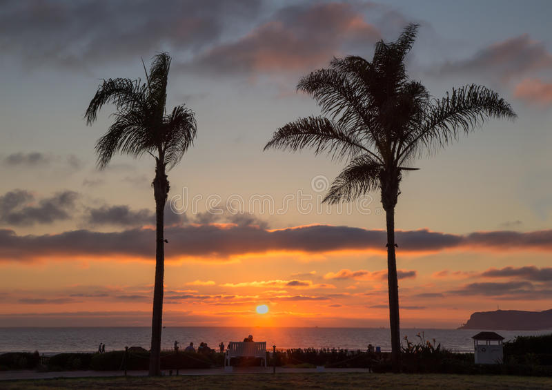 Palm trees sunset at Coronado, San Diego. Taken on a visit to San Diego in January and visited the Del, this shows a couple on a bench enjoying the sunset royalty free stock photos