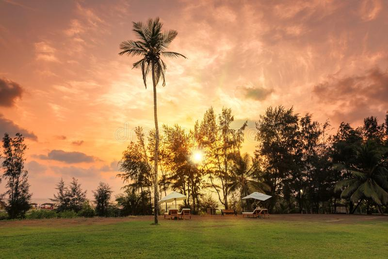 Palm trees at sunset on paradise tropical beach royalty free stock images