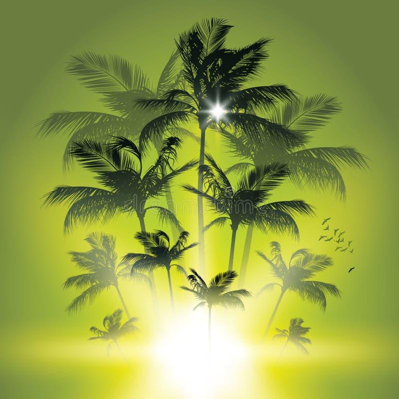 Palm trees at sunset. stock illustration