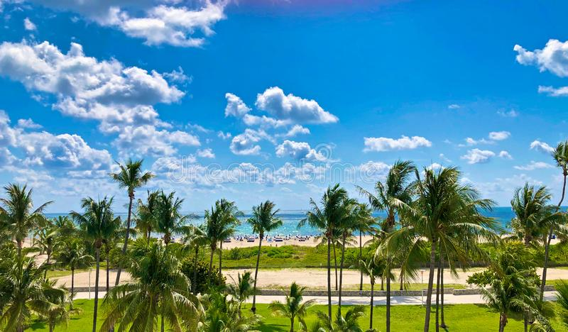 South Beach Miami Florida. Palm trees tan sand and puffy white clouds on blue sunny sky is the landscape of South Beach Miami Florida stock images