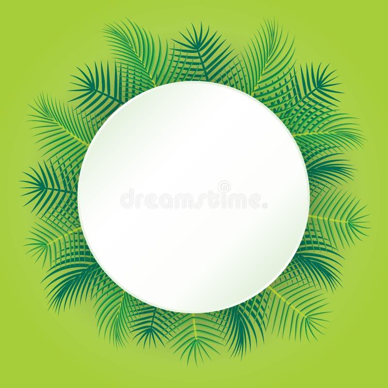 Palm trees vector illustration