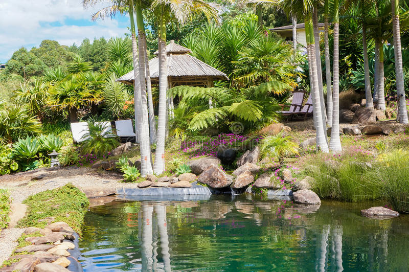 Palm trees in tropical garden in Kerikeri, New Zealand. Palm trees and recreation facilities by the water in tropical garden in Kerikeri, New Zealand royalty free stock photo