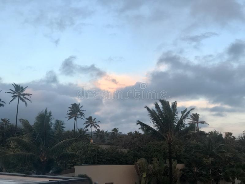 Tropical paradise Honolulu Hawaii ocean scenery royalty free stock image