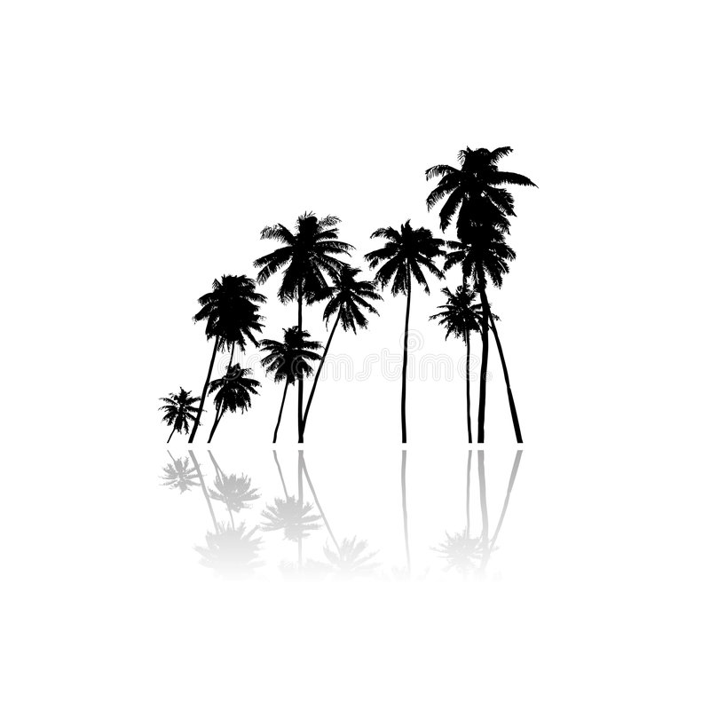 Free Palm Trees Vector Silhouette Stock Images - 9227644