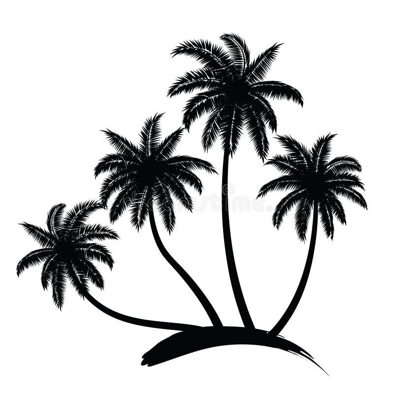 Palm trees vector stock illustration