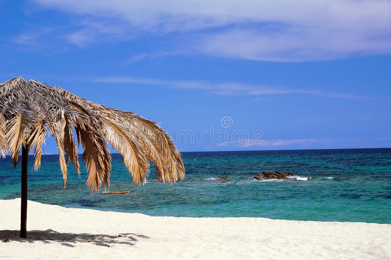 Download Palm Umbrella On The Beach Royalty Free Stock Image - Image: 9959666