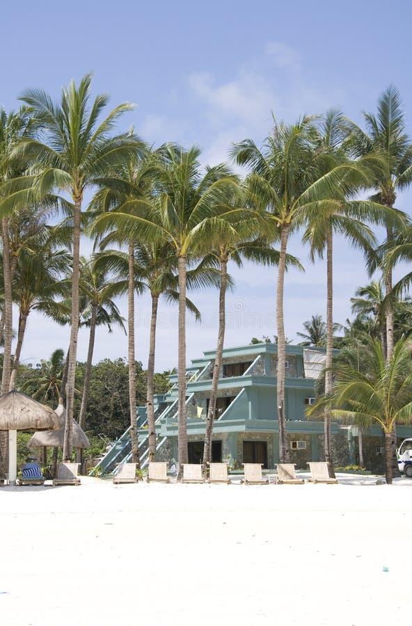 Palm, wit zand en turkoois zeewater royalty-vrije stock foto's