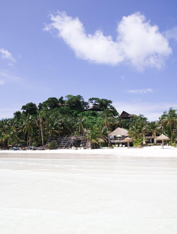 Palm, wit zand en turkoois zeewater stock afbeelding