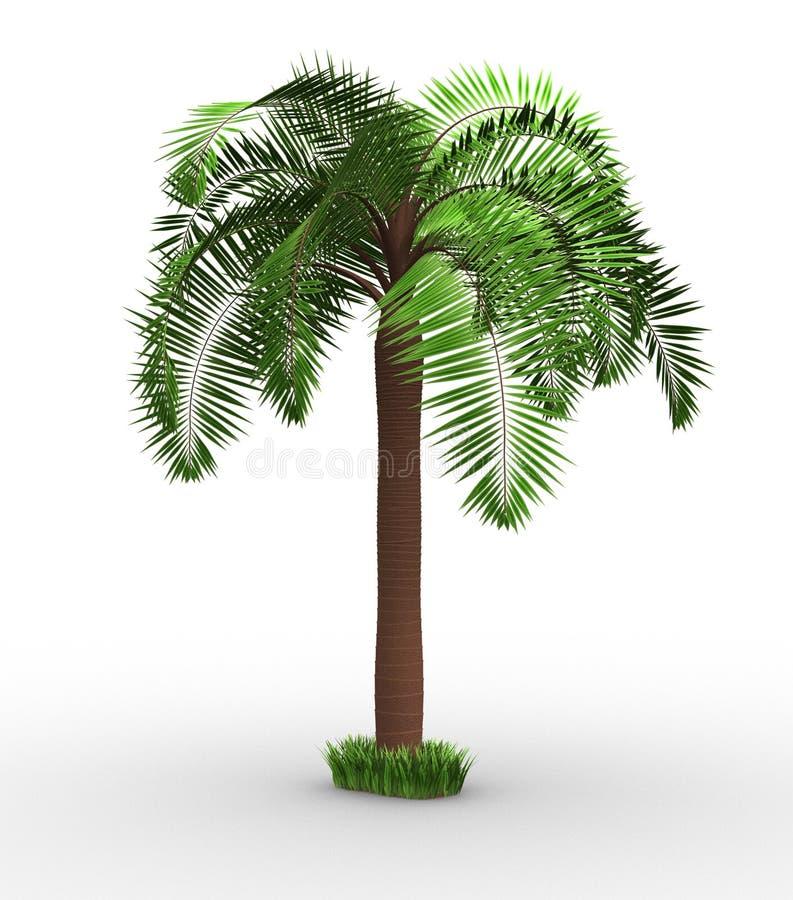 Palma-árbol ilustración del vector