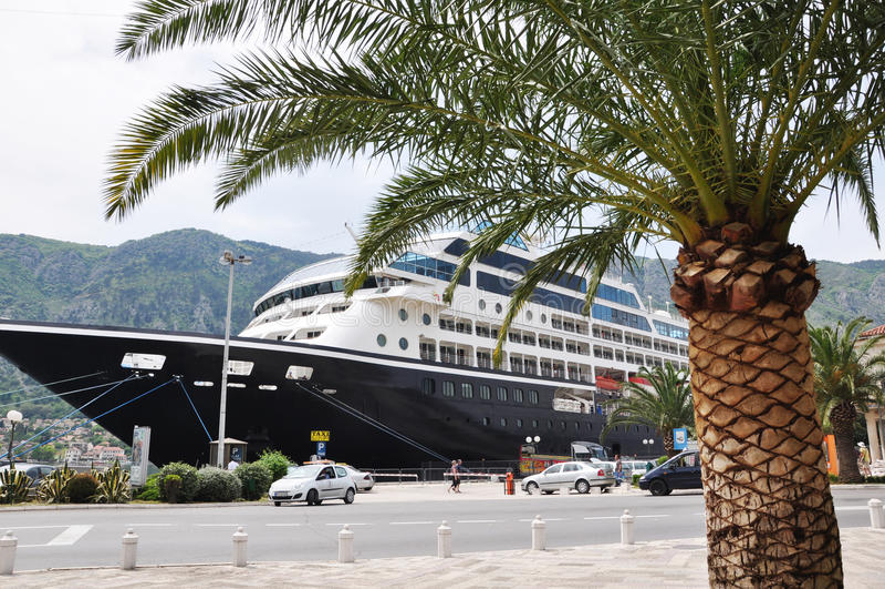 Palma και το σκάφος στοκ εικόνα