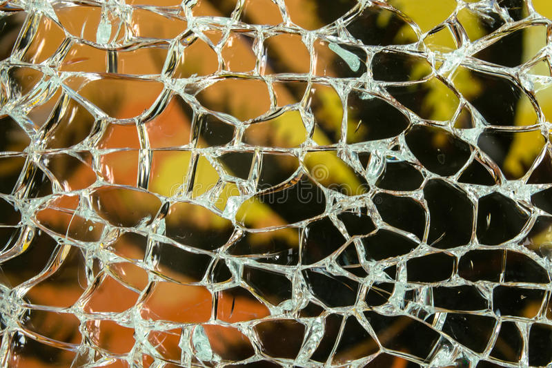 Palma através do vidro quebrado fotografia de stock