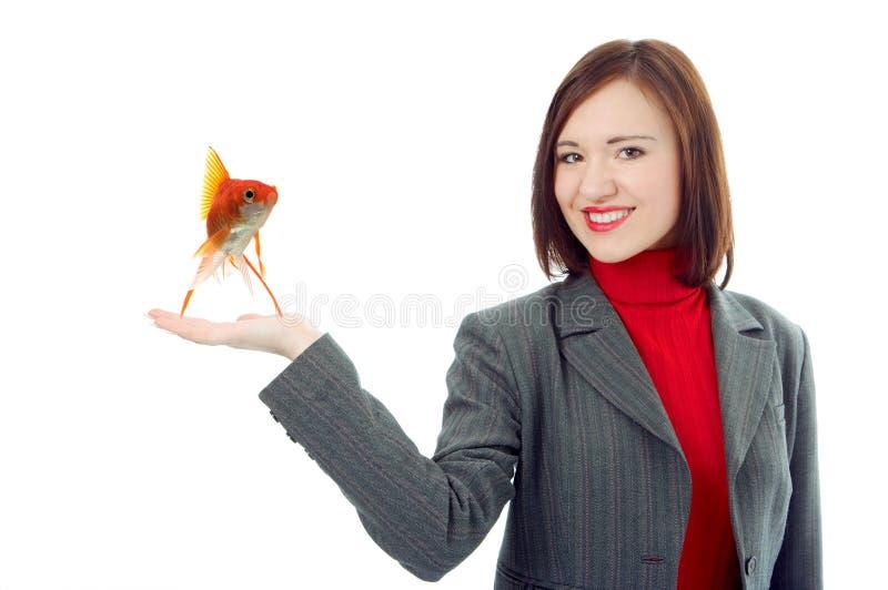 Palma da mão da preensão da mulher de negócio acima foto de stock