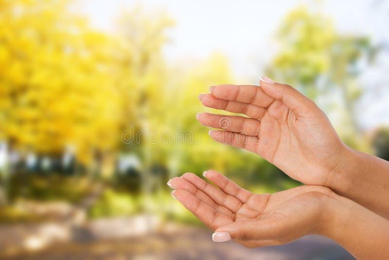 Palma da mão dois do ` s da mulher negra acima handbreadth no fundo borrado do parque Front View Zombaria acima Copie o espaço imagens de stock royalty free