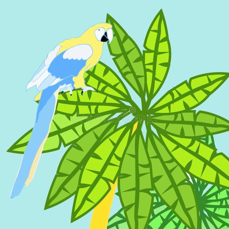 A palma de Havaí e o ouro das caraíbas do papagaio vector a ilustração ilustração stock