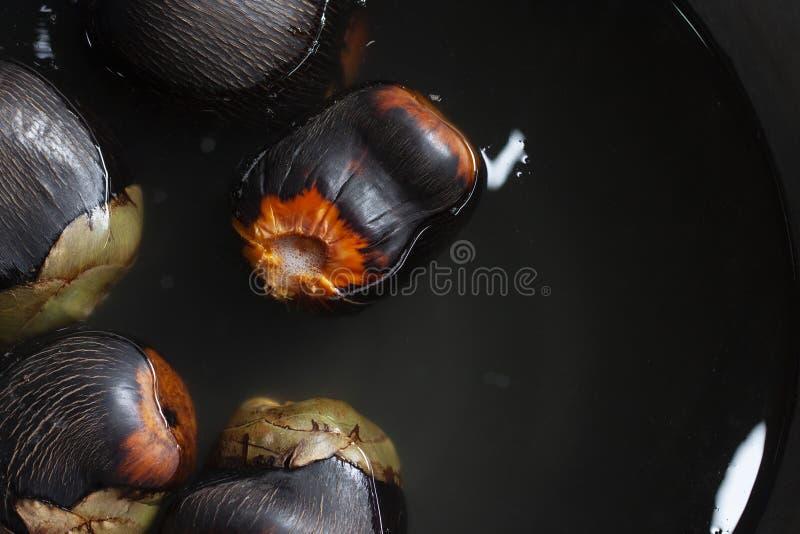 A palma de Palmyra, a palma de Toddy, a palma de açúcar ou a palma cambojana são imergidas na água para fazer sobremesas foto de stock