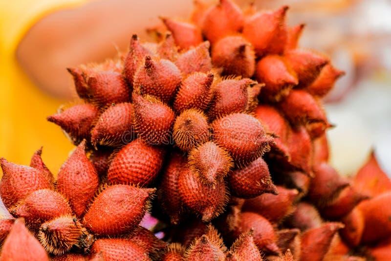 Palma de Salak o fruta de la serpiente en venta en la mercado de la fruta/el zalacca de Salacca fotografía de archivo libre de regalías