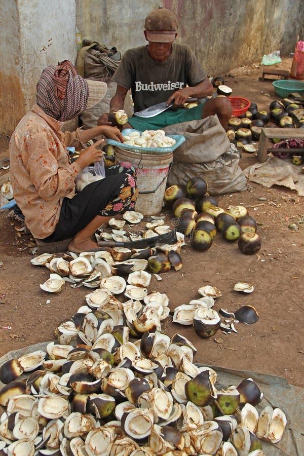 Palma del Cambodian di apertura fotografie stock libere da diritti