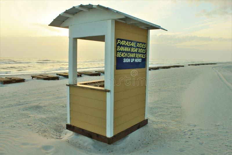 Palma del golfo del Messico della spiaggia di Panamá vicino ai cervi pittoreschi di tramonto fotografie stock libere da diritti